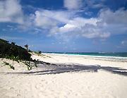 Mexico, Yucatan, Tulum beach