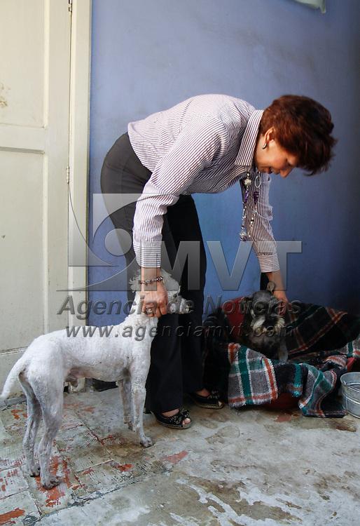 Toluca, México.- Patricia Carranza Gloria, promotora de los derechos de las mascotas junto con otras organizaciones, lleva 3 años dedicándose a salvar a perros de todas las razas y  tamaños, de las calles y de maltrato que pueden sufrir, estos animalitos esperan conseguir un hogar,  los alimentan, les brindan atención veterinaria, hasta que encuentran una personas que los adopte. Agencia MVT /Crisanta Espinosa