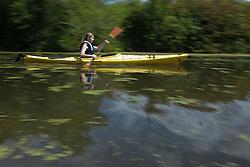North America, United States, Washington, Bellevue, girl (age 12)  kayaking  in Mercer Slough Nature Park, blurred motion.  MR