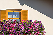 Tyrolian village flower boxes, October, Dolomite Mountains, N.E. Italy