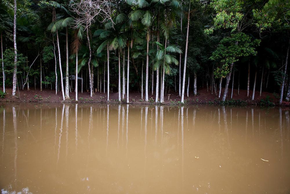 Ibatiba_ES, Brasil...Lago no Recanto da Vo Rosinha em Ibatiba...A lake in Recanto da Vo Rosinha in Ibatiba...Foto: LEO DRUMOND / NITRO