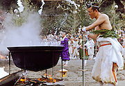 A mountain priest or Yamabushi whips himself with tree leaves dipped in boiling water during the Hi Watari fire walking festival of Takao san Guchi near Tokyo, Japan. Sunday March 11th 2007