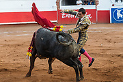 Spanish bullfighter Paco Urena thrusts his sword into bull at the Plaza de Toros bullring March 3, 2018 in San Miguel de Allende, Mexico.