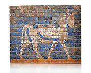 Coloured glazed brick panels depicting bulls, the symbol of the weather god Adad, from the facade of the  first smaller Ishtar Gate, Babylon, dating from 604-562 BC. Babylon (present day Iraq). The Ishtar Gate, Babylon, was situated in the northern wall of the city and was named after the goddess Ishtar. The ground plan and debris of the gate buildings were uncovered during the German excavation from 1899-1917 directed by Robert Koldewey. The Vorderasiatisches Museum, part of the Pergamon Museum, Berlin .<br /> <br /> If you prefer to buy from our ALAMY PHOTO LIBRARY  Collection visit : https://www.alamy.com/portfolio/paul-williams-funkystock/babylon-antiquities.html<br /> <br /> Visit our ANCIENT WORLD PHOTO COLLECTIONS for more photos to download or buy as wall art prints https://funkystock.photoshelter.com/gallery-collection/Ancient-World-Art-Antiquities-Historic-Sites-Pictures-Images-of/C00006u26yqSkDOM