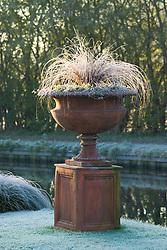 Terracotta urn on plinth on a frosty winter's morning. Carex comans 'Bronze form'