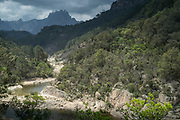 High angle view of river, forest and mountains, Col de Bavella, Corsica, France