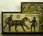 Mosaic with Tiger and Gladiators. 2nd centuryAD.  National Museum, Rome.