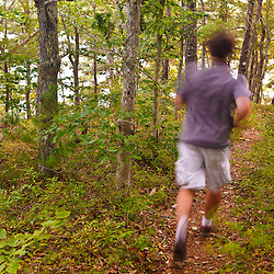 A man hiking the Big Point Trail in the Wildlands Trust's Halfway Pond Conservation Area in Plymouth, Massachusetts.