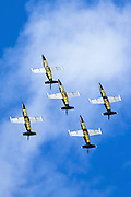 Breitling air display team L-39 Albatross
