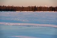 The full moon sets by the Tanana River near Nenana Alaska on January 11, 2020.