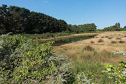 23-07-2015 t/m 09-08-2014 FRA: Vakantie Bretagne en Normandie 2014<br /> Plobannalec-Lesconil, Bretagne