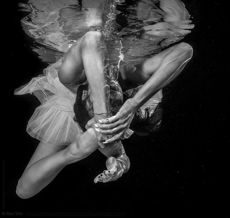 Underwater Fine Art Photograph