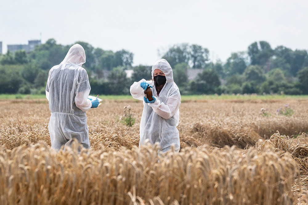 Erftstadt, DEU, 27.07.2021<br /> <br /> Greenpeace-Probenentnahme auf einem überfluteten Feld in Erftstadt Liblar<br /> <br /> Foto: Bernd Lauter/berndlauter.com