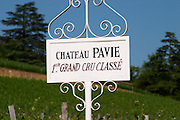 A white sign in the vineyard of Chateau Pavie 1er premier first Grand Cru Classe, detail Saint Emilion Bordeaux Gironde Aquitaine France