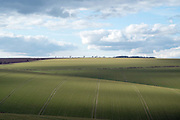 Early spring arable landscape at Burdale in the Yorkshire Wolds, United Kingdom on 25 March 2018. The Yorkshire Wolds is the most northerly chalk upland in the British Isles. The landscape consists of rolling arable land mixed with deep incised dales known locally as slacks