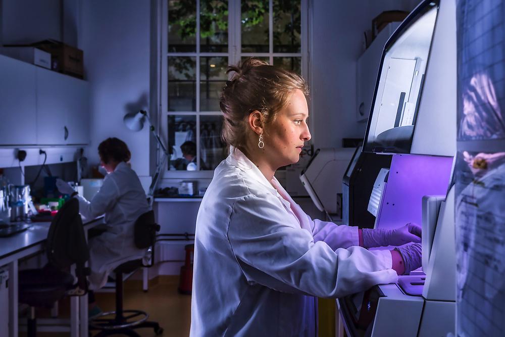 Laurine, une technicienne de laboratoire de l'Institut Pasteur de Paris, effectue des analyses de biologie moléculaire dans le cadre des protocoles de recherches et d'études des virus.<br /> Laurine, a laboratory technician from the Institut Pasteur in Paris, performs molecular biology analyzes as part of research and virus study protocols.