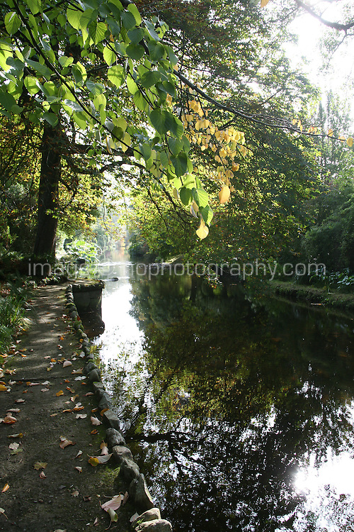 Autumn trees reflected in a river in Wicklow
