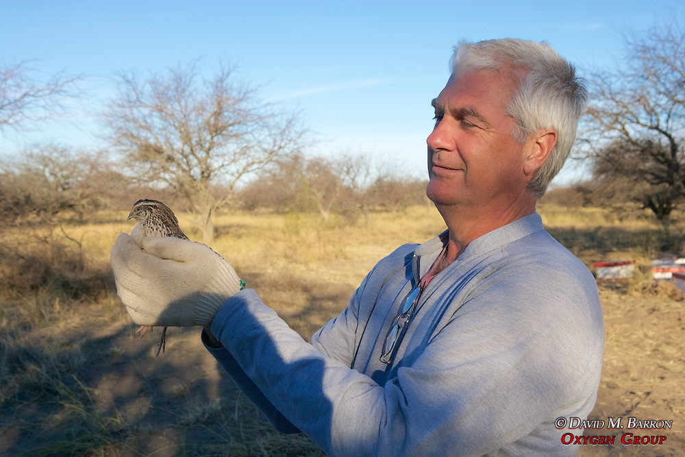 Scott Taylor Holding Bird Used For Live Bait
