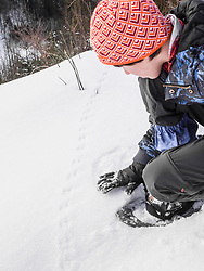 Girl touching the animal tracks on snow in Black Forest, Germany, Europe