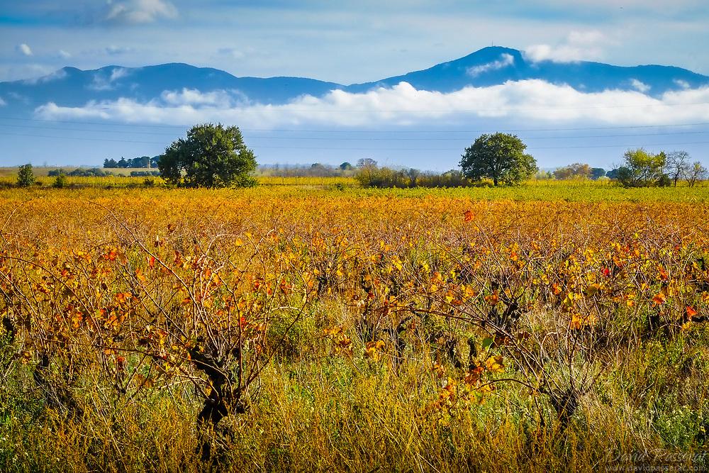 Cap of Fouste in autumn