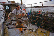 Sam Tucker, lobsterman and fish buyer, working on a lobster boat at the Great Diamond Island in Portland, Maine. (Samuel Tucker is featured in the book What I Eat: Around the World in 80 Diets.)  MODEL RELEASED