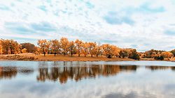The gold and orange autumn trees reflect on the lake under blue skies and puffy clouds at Broemmelsiek Park in Wentzville, Missouri