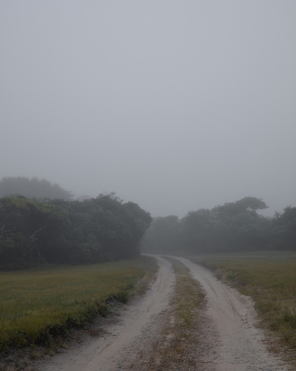 A weather beaten sand road on Nantucket.