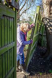 Assessing wind damage to fence panels