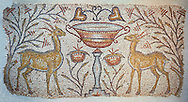 Roman mosaic of two Gazelles facing inwards either side of a vase, Eastern Mediterranean, the beginning of the 6th century AD. The mosaic design is typical of  church  floors in front of the choir. The choice of gazelles is rare though and indicates a local flavour to the content. Inv 3673, The Louvre Museum, Paris .<br /> <br /> If you prefer to buy from our ALAMY PHOTO LIBRARY  Collection visit : https://www.alamy.com/portfolio/paul-williams-funkystock/roman-mosaic.html - Type -   Louvre    - into the LOWER SEARCH WITHIN GALLERY box. Refine search by adding background colour, place, museum etc<br /> <br /> Visit our ROMAN MOSAIC PHOTO COLLECTIONS for more photos to download  as wall art prints https://funkystock.photoshelter.com/gallery-collection/Roman-Mosaics-Art-Pictures-Images/C0000LcfNel7FpLI .