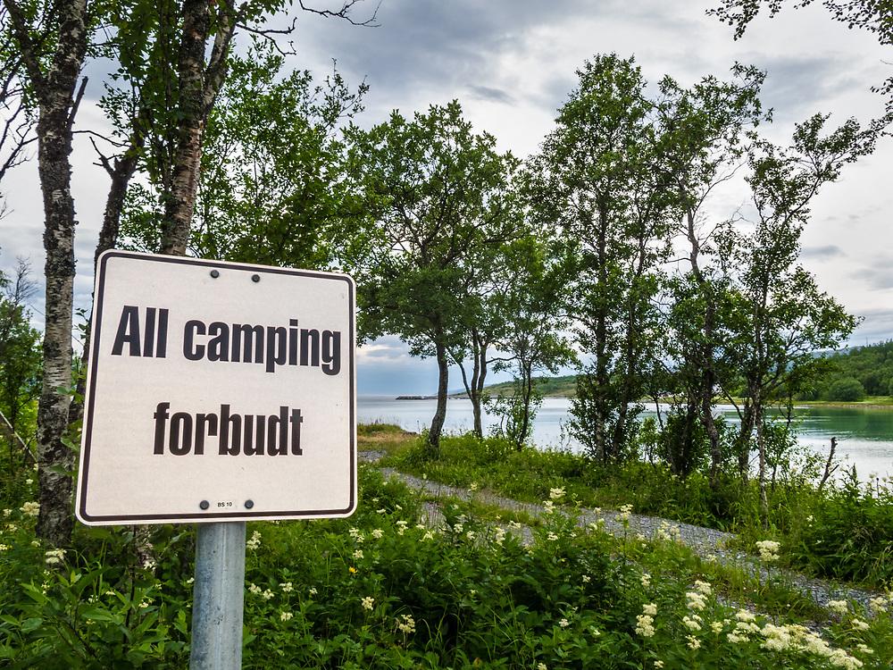Camping forbudt-skilt i sceniske omgivelser.