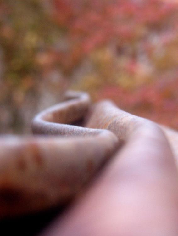 Detalle de Exposición en el CAAC (Centro Andaluz de Arte Contemporáneo), Sevilla.<br /> Escultura de un tren accidentado en acero oxidado sobre fondo de hojas de yedra en otoño.