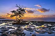 Bhahia Honda State park, Florida Keys, Florida.