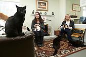 Les Gibbon - Cat Home