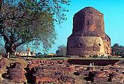 INDIA, RELIGION, BUDDHISM Sarnath Stupa, Buddha's first sermon site