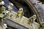 Nederland, Den Bosch, 10-11-2015Een wandeling tussen de luchtboogbeelden, fabeldieren en potsenmakers, op het dak van de Sint-Janskathedraal.  Deze Gotische kerk is gebouwd tussen 1370 en 1529.Stenen figuren op de steunberen van de Sint-Jan. FOTO: FLIP FRANSSEN/ HH