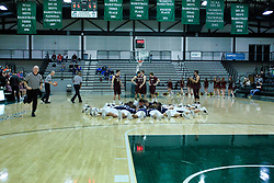22 January 2019: Quarterfinal round game of the 108th McLean County Tournament at Shirk Center in Bloomington Illinois.   LeRoy Panthers v Fieldcrest Knights
