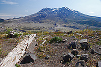 Mount St Helens, Washington State, USA, which last erupted in May, 1980. The rocks and uprooted plants from the eruption have deliberately been left where they landed to illustrate the force of the volcanic action. 200809020894<br /> <br /> Copyright Image from Victor Patterson, Belfast, UK<br /> <br /> t: +44 28 9066 1296 (from Rep of Ireland 048 9066 1296)<br /> m: +44 7802 353836<br /> e: victorpattersonbelfast@gmail.com<br /> <br /> www.images4media.com the new website which will ultimately replace  www.victorpatterson.com<br /> <br /> Please see my full Terms and Conditions of Use at https://www.victorpatterson.com/page2<br /> It is IMPORTANT that you familiarise yourself with them.<br /> <br /> Images used on the Internet incur an additional cost and must be visibly watermarked i.e. © Victor Patterson or that of the named photographer within the body of the image. The online image must retain all the original metadata. Any changes must be agreed in writing.<br /> <br /> This image is only available for the use of the download recipient i.e. television station, newspaper, magazine, book publisher, etc, and must not be passed on to a third party. It is also downloaded on condition that each and every usage is notified within 7 days to victorpattersonbelfast@gmail.com.<br /> <br /> The right of Victor Patterson (or the named photographer) to be identified as the author is asserted in accordance with The Copyright Designs And Patents Act (1988). All moral rights are asserted.