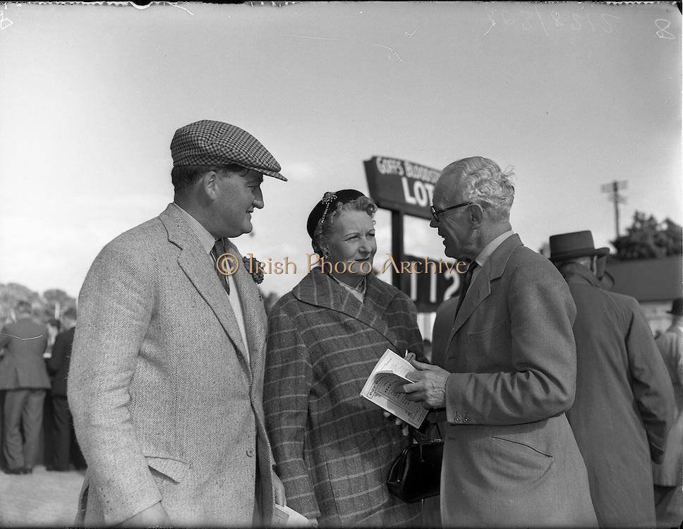20/09/1954<br /> 09/20/1954<br /> 20 September 1954<br /> Goffs September (Annual Yearling) Bloodstock sales at the RDS, Ballsbridge Dublin.