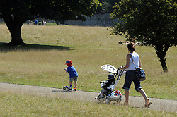 © Licensed to London News Pictures. 28/08/2013<br /> Hot weather in Sevenoaks,Kent today (28.08.2013)<br /> People enjoying the hot weather in the last full week of the School summer holidays at Knole Park,Sevenoaks,Kent.<br /> Photo credit :Grant Falvey/LNP