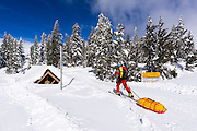 Backcountry skier heading into the Ansel Adams Wilderness, Sierra Nevada Mountains, California USA
