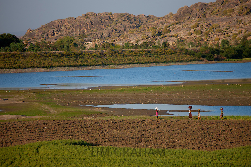 Agricultural workers in fields by Aravalli mountain range at Nimaj, Rajasthan, Northern India