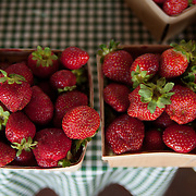 Fresh strawberries at a farmstand in Concord, Massachusetts