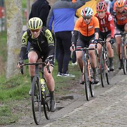 29-02-2020: Wielrennen: Omloop Nieuwsblad: Ninove; Gracie Elvin