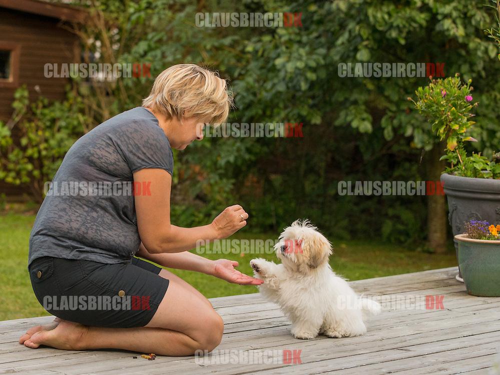 Anton og Jane leger og træner på terrassen i sommerhuset.  Foto: Claus Birch.