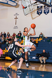 29 December 2009: State Farm Holiday Classic.  Normal Community West (NCWHS) v Richwoods, Girls 3a-4a
