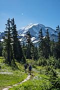 Spray Park in mid August, Mount Rainier National Park, Washington, USA.