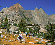 California, USA: Backpackers walk with poles beneath Virginia Peak, Yosemite National Park. Published in Sierra Magazine, Sierra Club Outings March/April 2003. We backpacked over several days from Virginia Lakes Trailhead to Summit Lake, then out to Green Creek Trailhead via Hoover Wilderness.