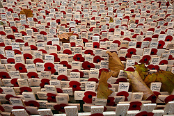 © Licensed to London News Pictures.06/11/2013. London, UK. Crosses stand on the Field of Remembrance at Westminster Abbey. Every November the annual Field of Remembrance at Westminster Abbey is organised and run by The Poppy Factory. This year officially it will be opened on Thursday 7 November. Remembrance crosses are provided so that ex-Service men and women, as well as members of the public, can plant a cross in memory of their fallen comrades and loved ones.Photo credit : Peter Kollanyi/LNP