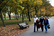 Men walking in Autumn through Regents Park, London. Trees during the fall season discolour, turning yellow and brown before dropping. With low light this makes for a beautiful time of year.