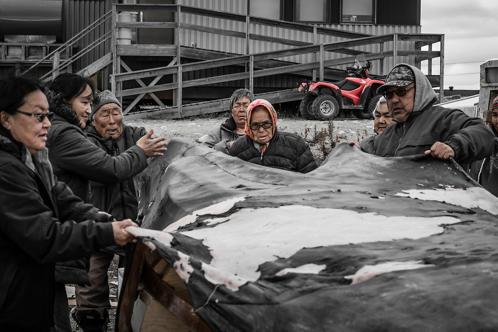 People gathered together to cover an umiak with a sewed seal skin. The elders were preparing that skin for about 10 days.